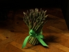 Asparagus - spring